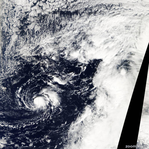Storm Omeka