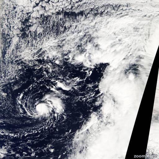 Storm Omeka 2010