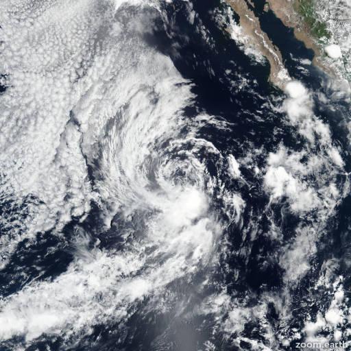 Storm Dalila 2019