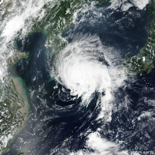 Typhoon Francisco 2019