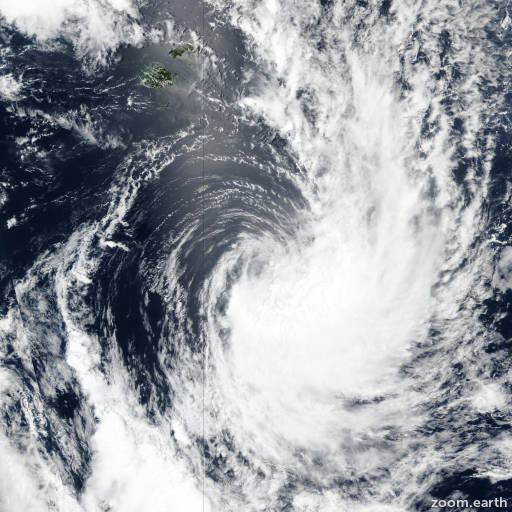Cyclone 20P
